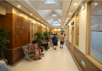 成都市中西医结合医院中医特色诊疗区开诊