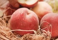 【中西医声】夏天吃桃子拉肚子,你可能是……