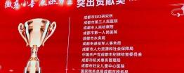 """喜讯!成都市广东福彩网医结合医院荣获2019成都""""慈善一日捐""""""""突出贡献奖""""!"""